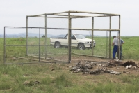 Vulture walk in trap  (photo by M. Neethling).
